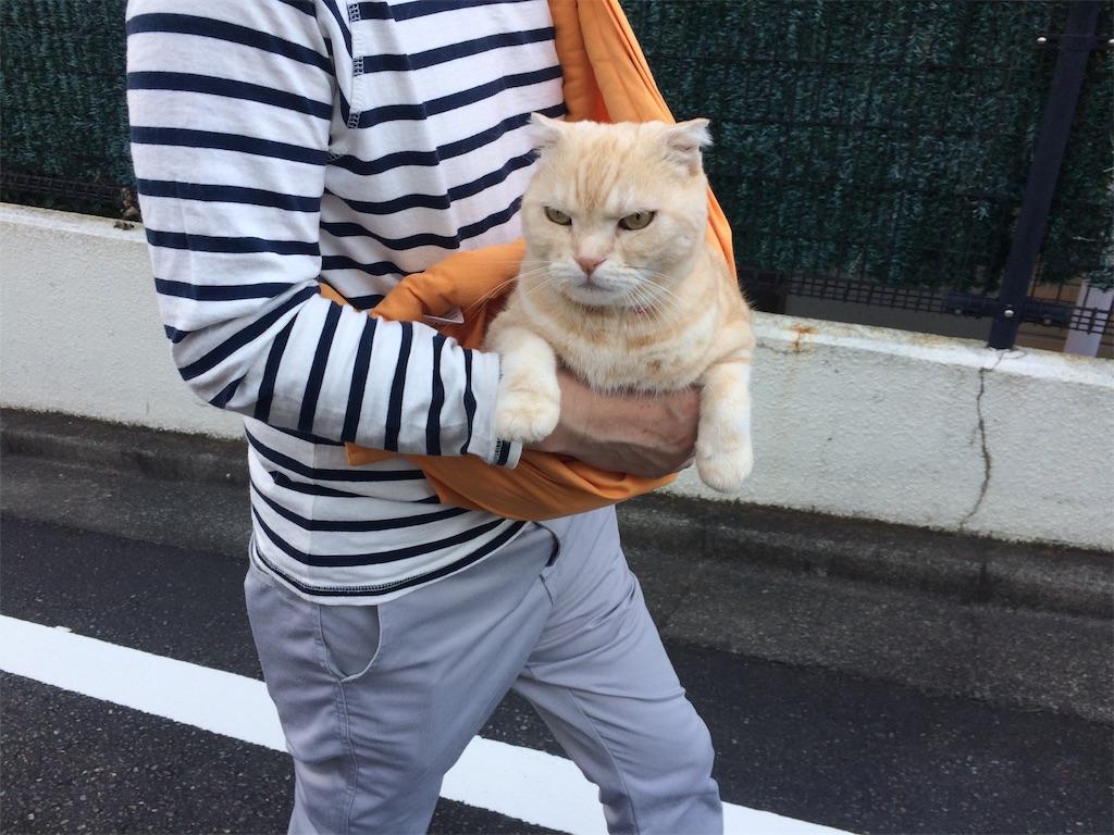 f:id:yutosuna:20190923100942j:image