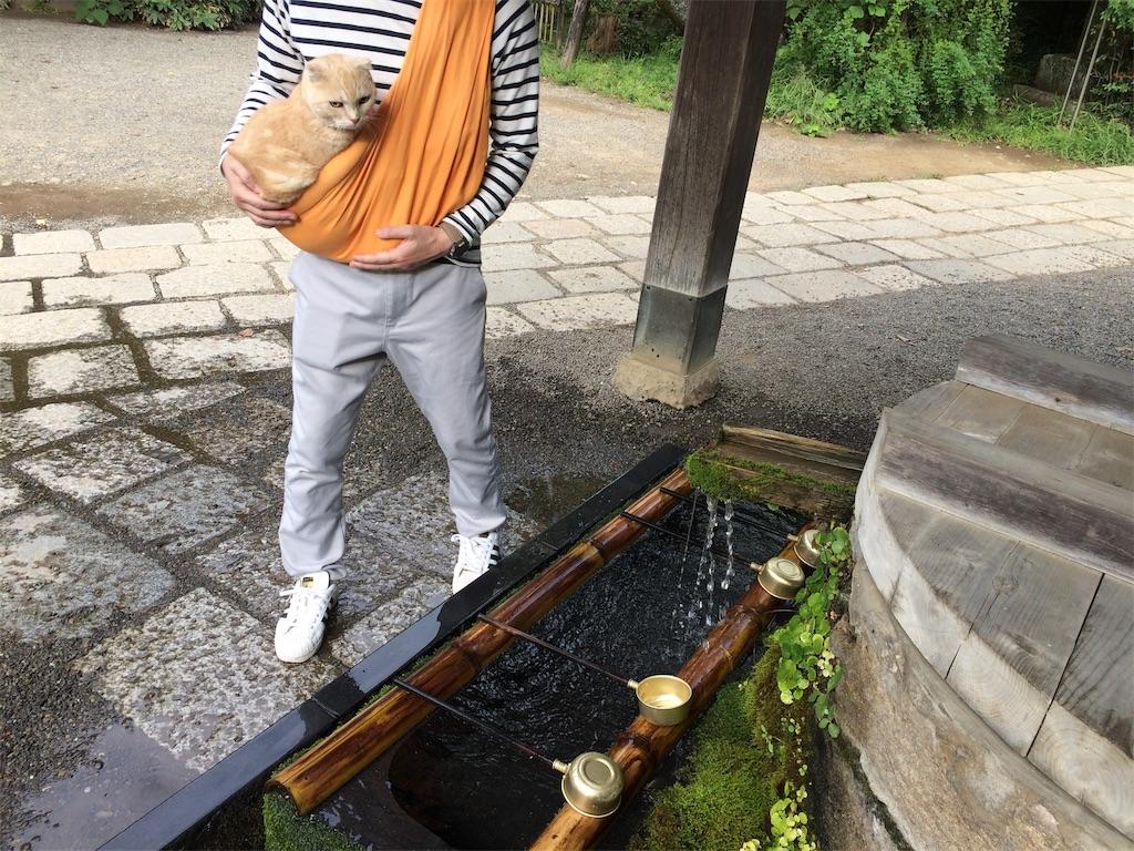 f:id:yutosuna:20190923101048j:image