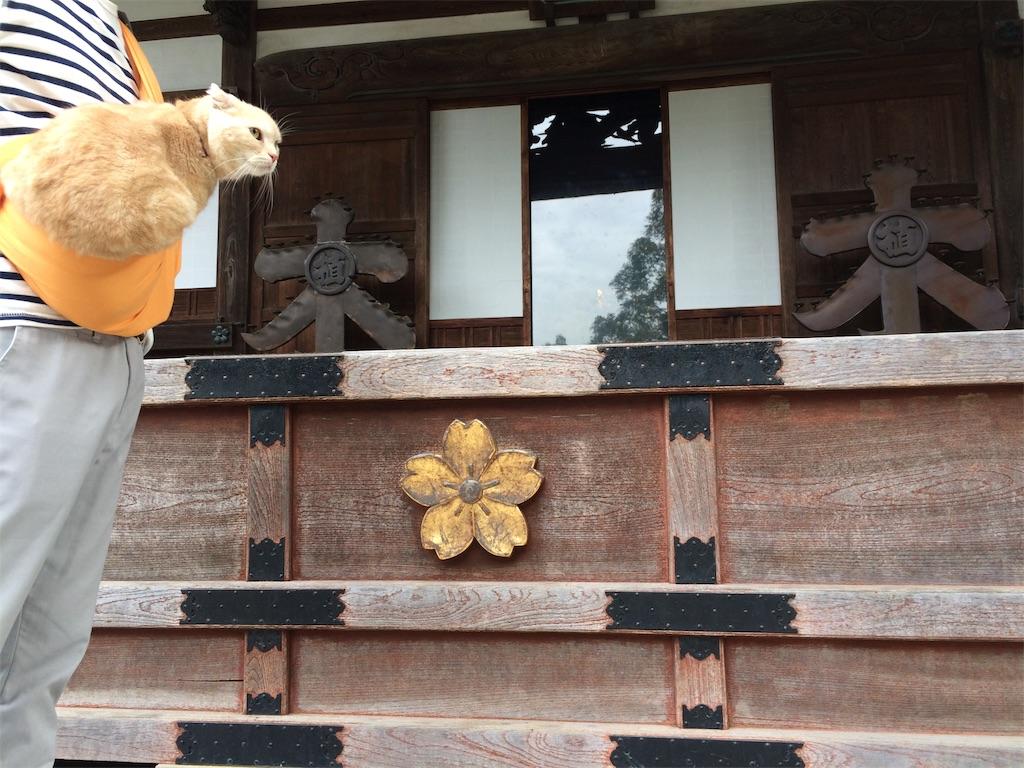 f:id:yutosuna:20190923101101j:image