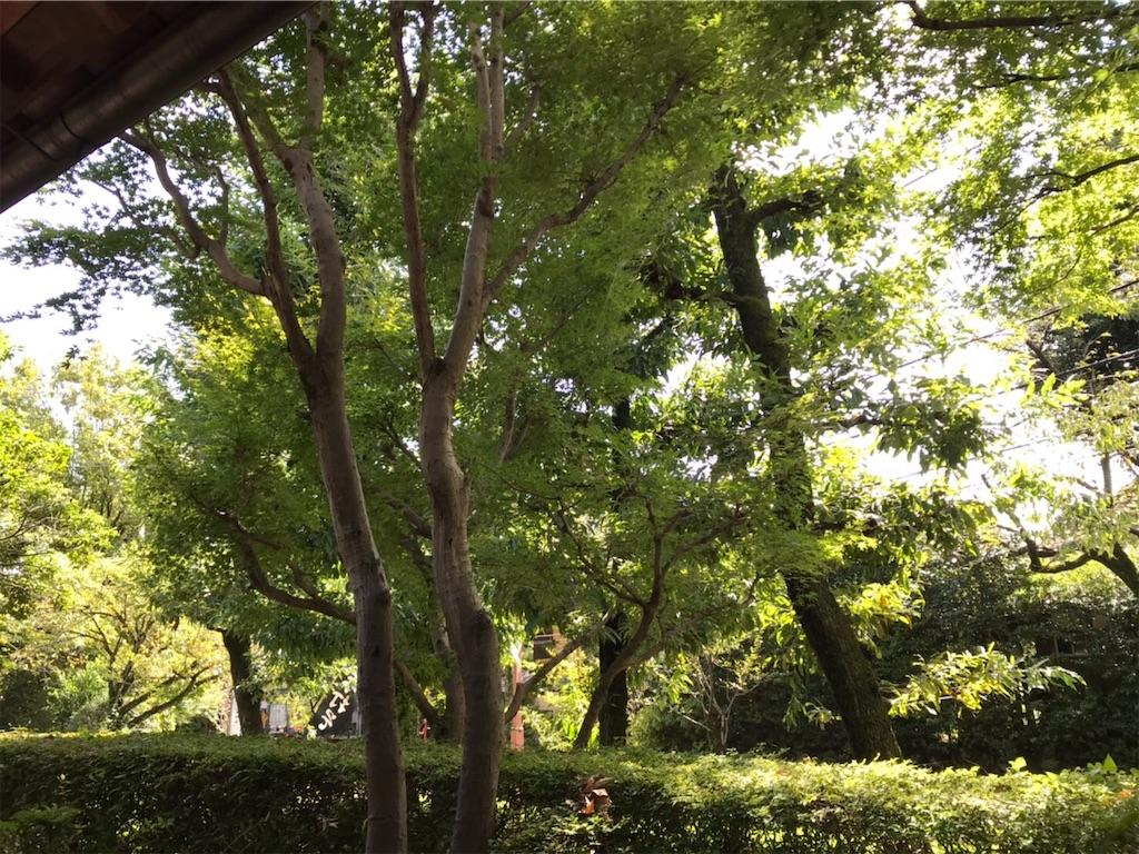 f:id:yutosuna:20190923161135j:image