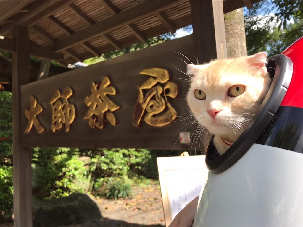 f:id:yutosuna:20190923161143j:image