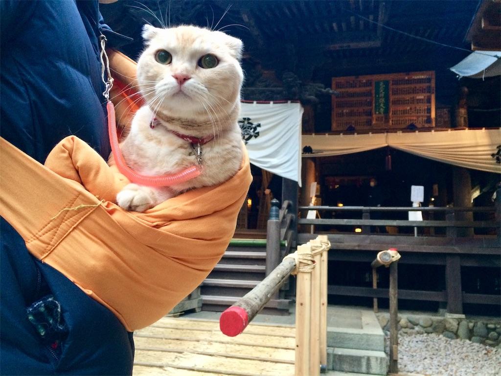 f:id:yutosuna:20200101080140j:image