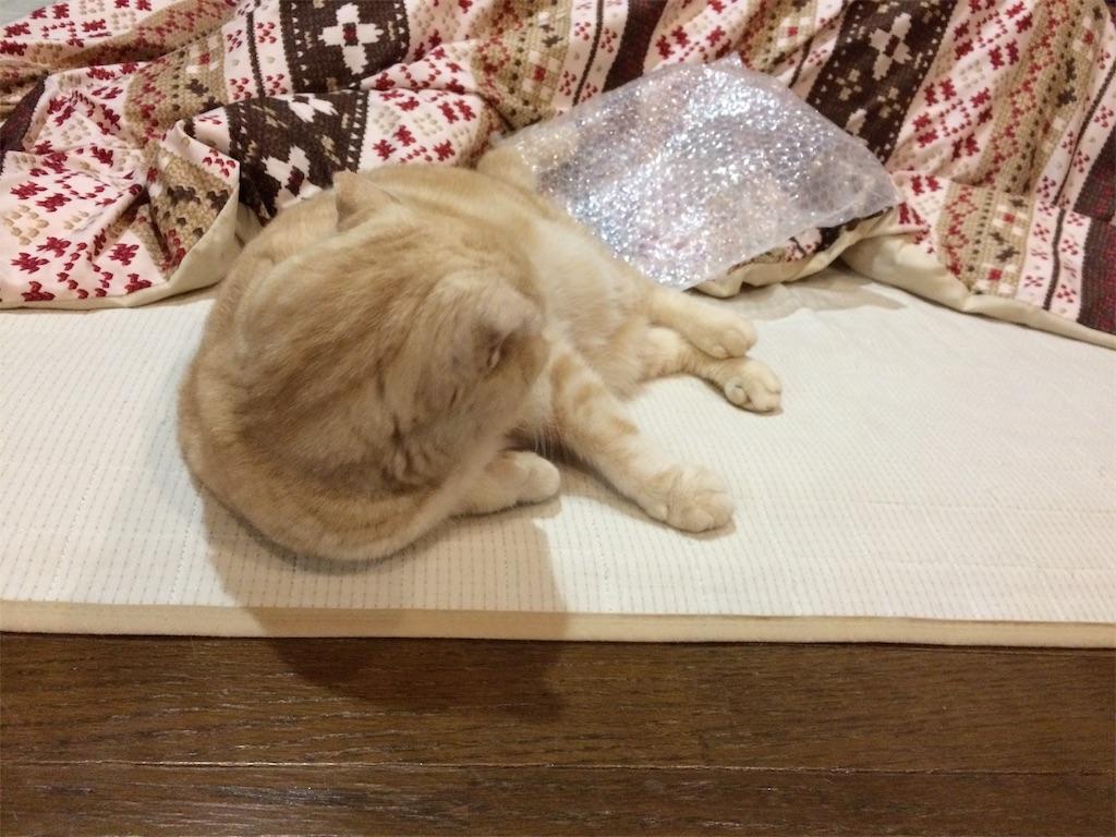 f:id:yutosuna:20200109101539j:image