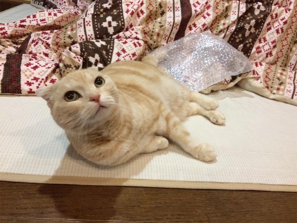 f:id:yutosuna:20200109102722j:image