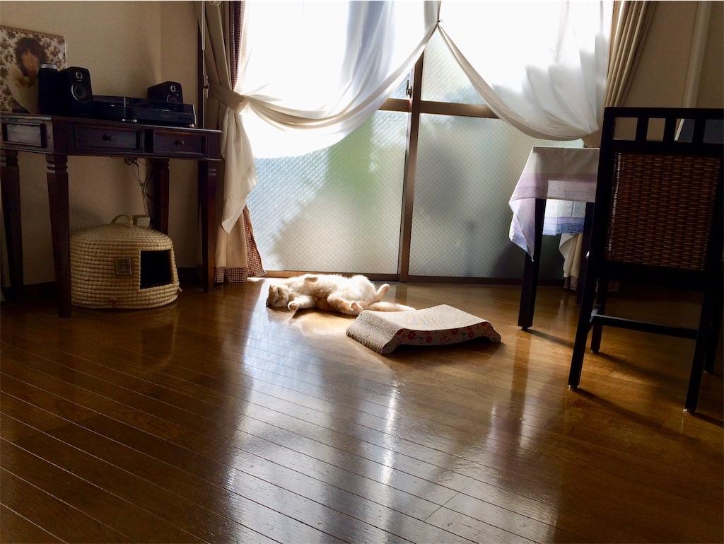 f:id:yutosuna:20200110083802j:image