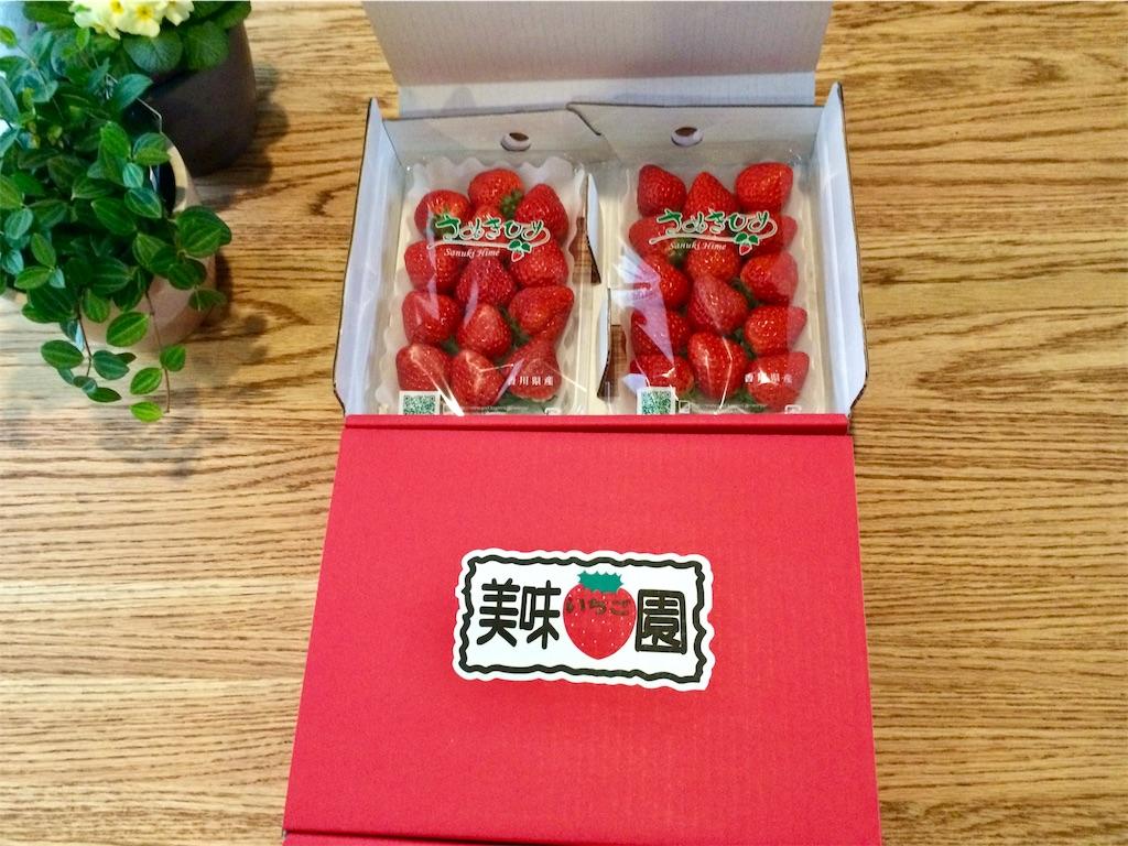 f:id:yutosuna:20200217070759j:image