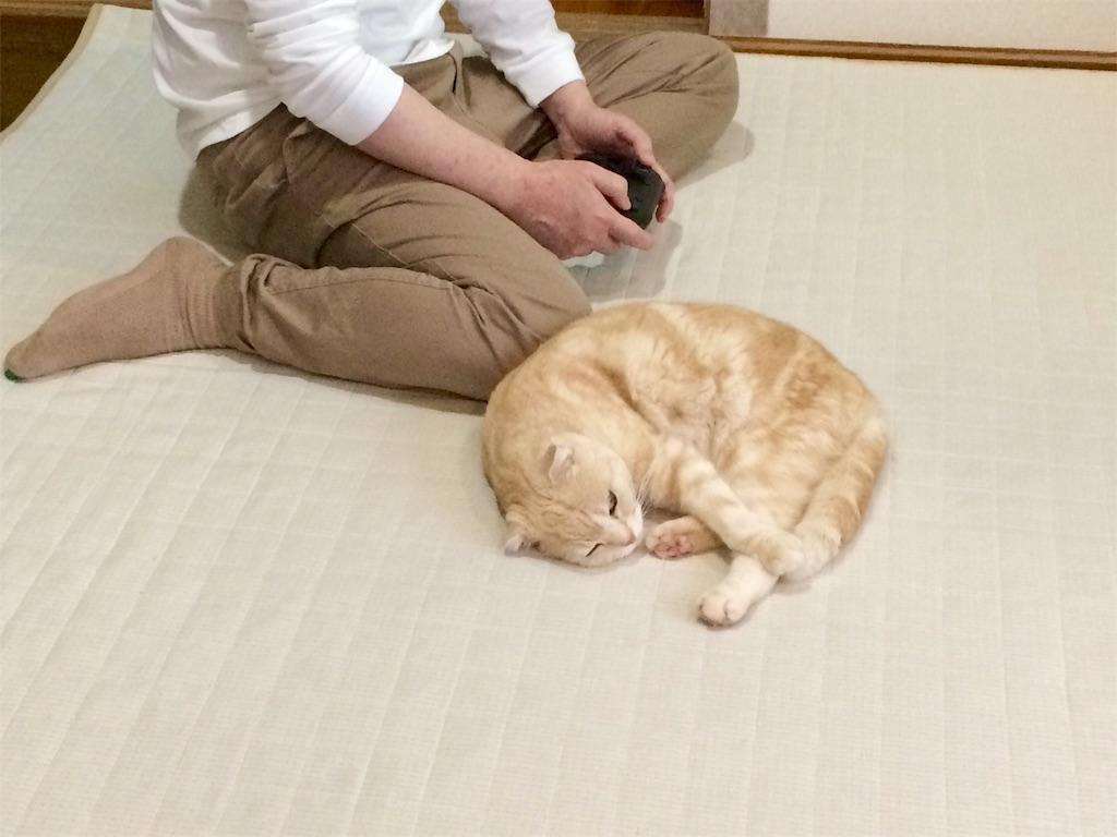 f:id:yutosuna:20200521081602j:image