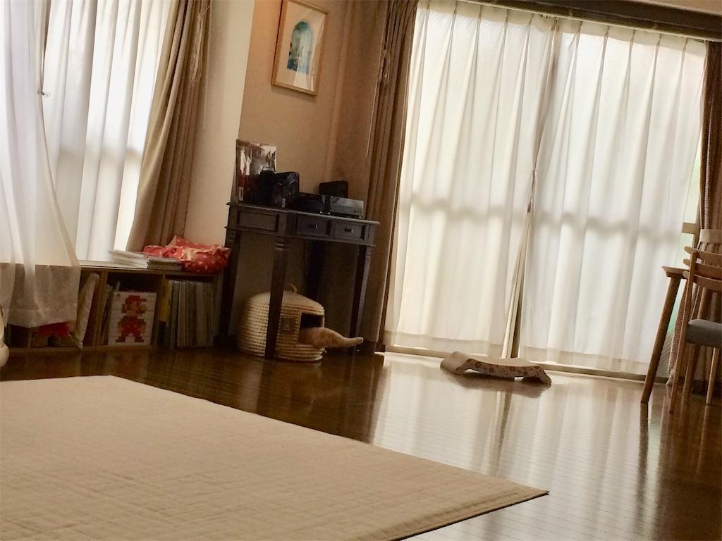 f:id:yutosuna:20200604063433j:image