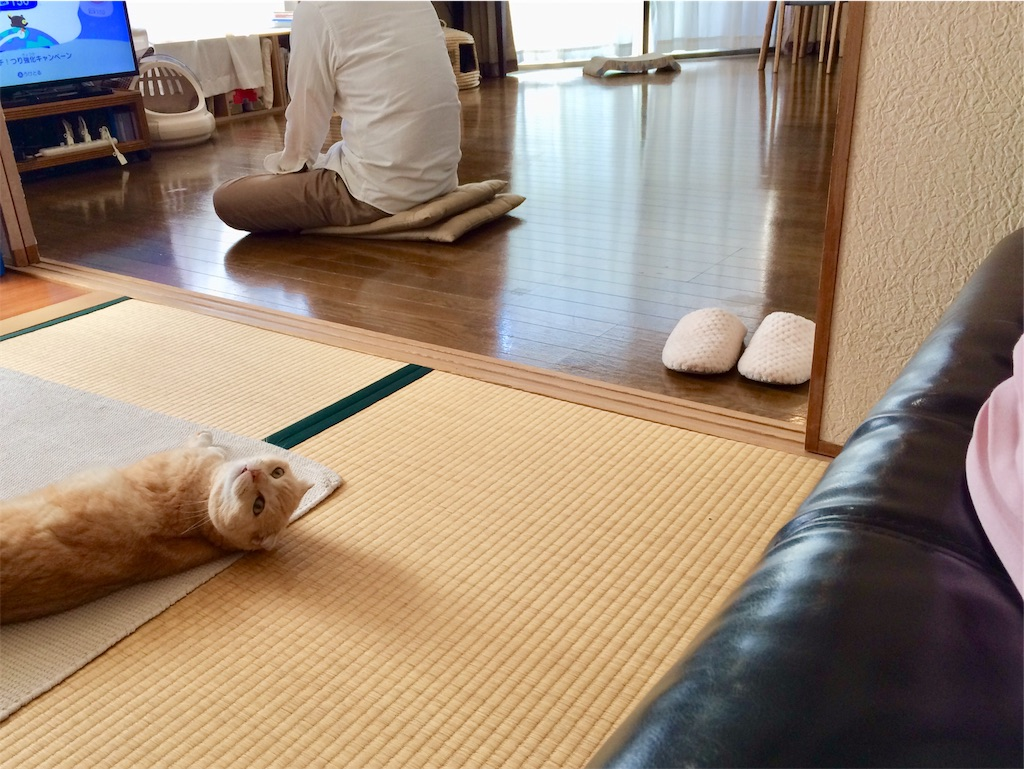 f:id:yutosuna:20200618055905j:image