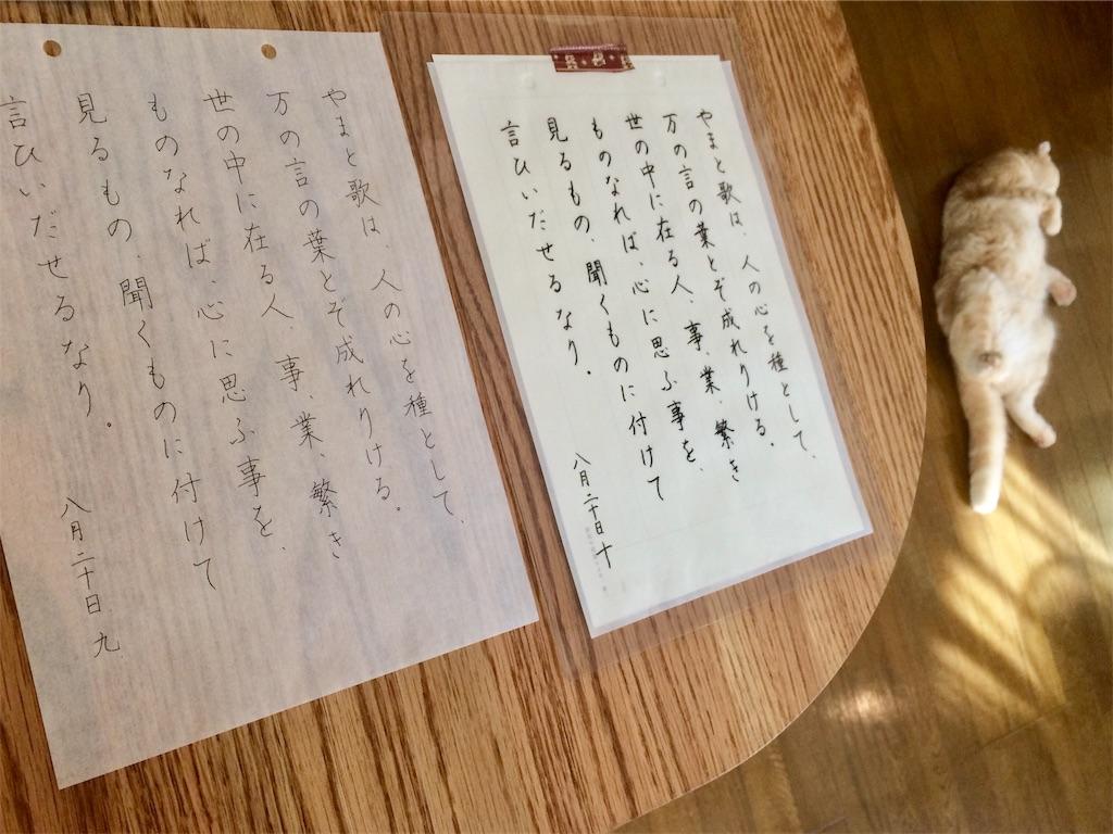 f:id:yutosuna:20200828052348j:image