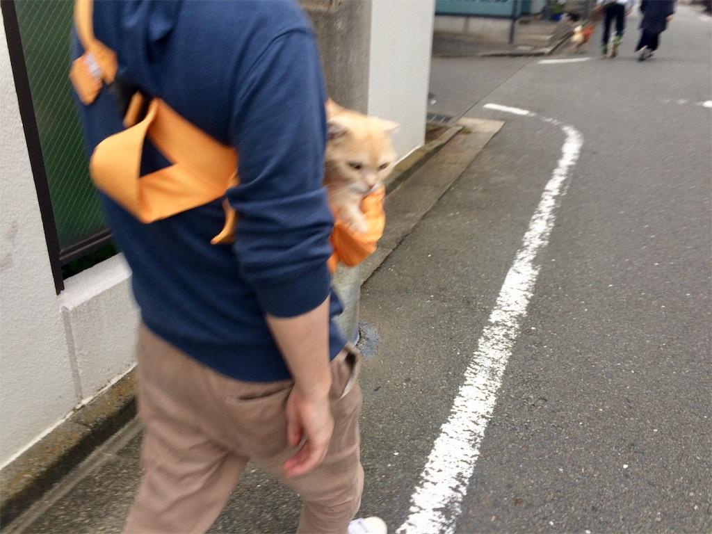 f:id:yutosuna:20201015072150j:image