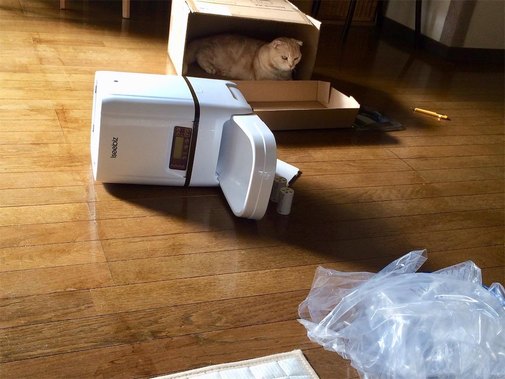 f:id:yutosuna:20201124082901j:image