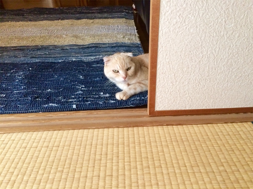 f:id:yutosuna:20210922074018j:image