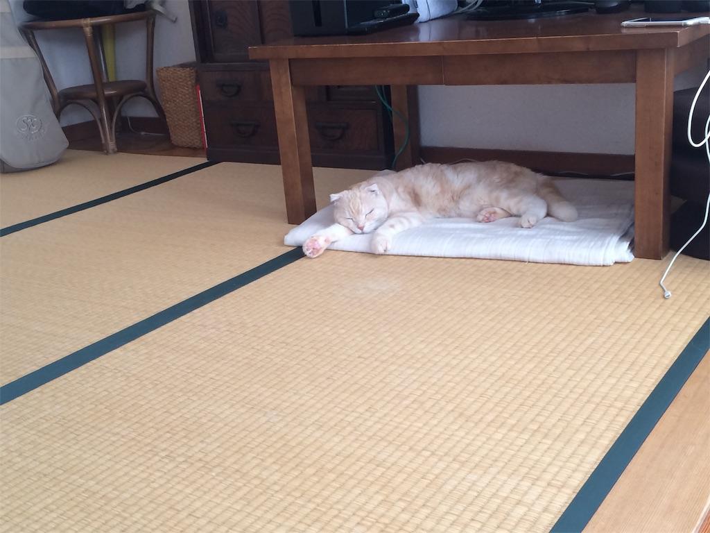 f:id:yutosuna:20211008194023j:image