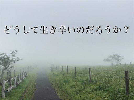 f:id:yuttari-kun:20180810183817j:image