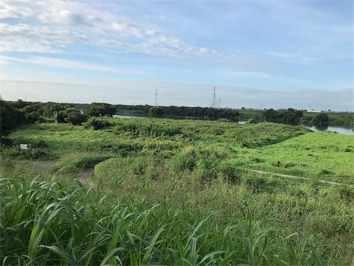 f:id:yuttari-kun:20180814222255j:image