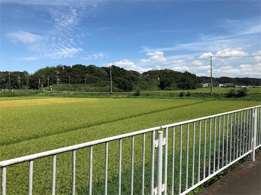 f:id:yuttari-kun:20180814225657j:image