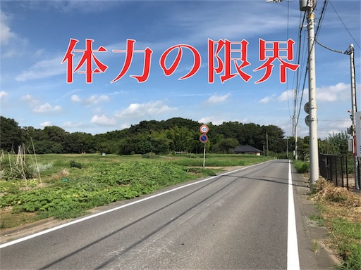 f:id:yuttari-kun:20180816003751j:image
