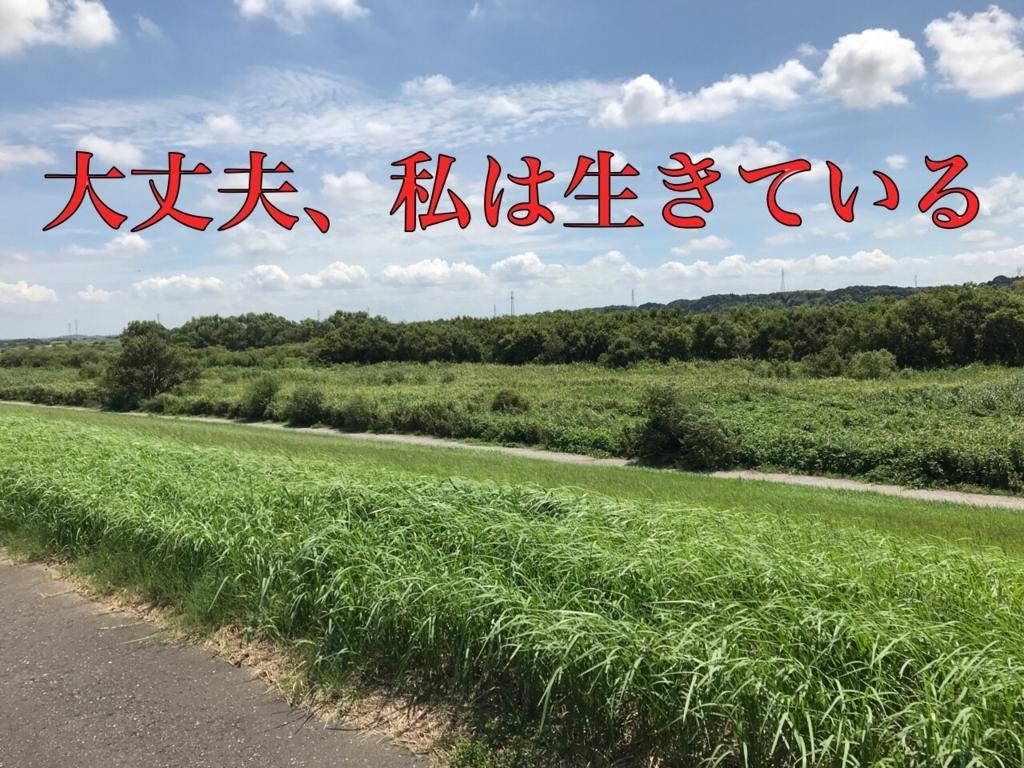 f:id:yuttari-kun:20180820231054j:plain