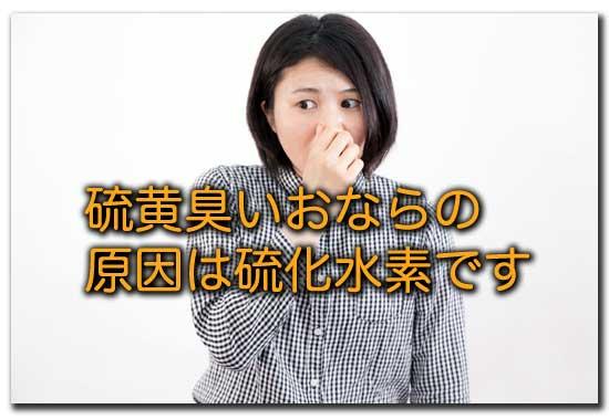 f:id:yutula:20190102151434j:plain