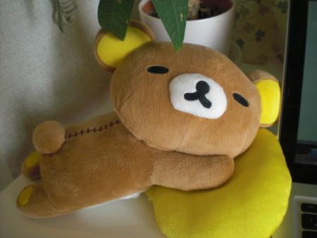 f:id:yuu-asokura:20090103105022j:image