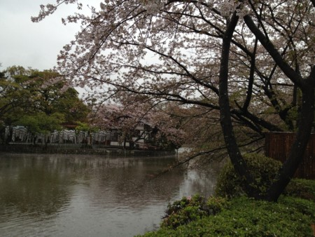 f:id:yuu-asokura:20120414155512j:image