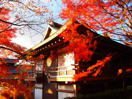 f:id:yuu-asokura:20131120153035j:image