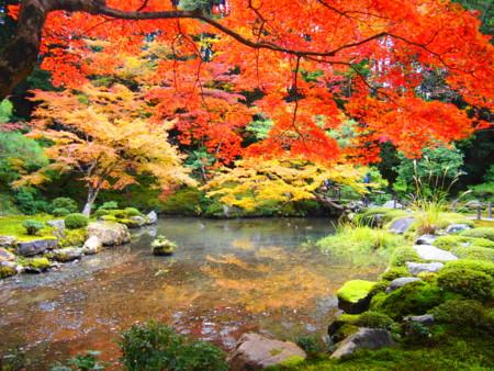 f:id:yuu-asokura:20131121134852j:image