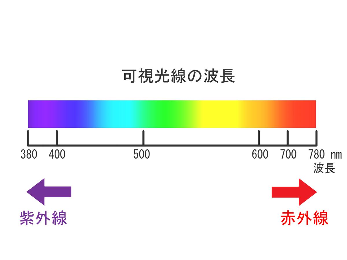 f:id:yuu-hanablog:20210427100453j:plain