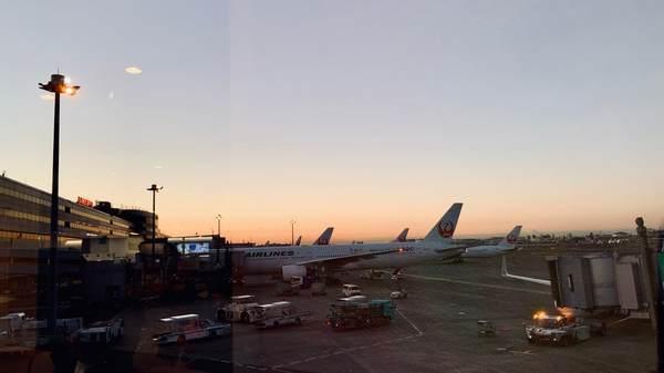 朝7時頃の羽田空港の様子