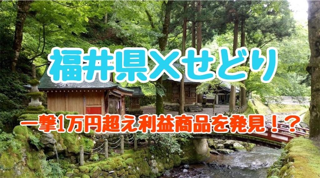 f:id:yuu304810:20200207021053j:image