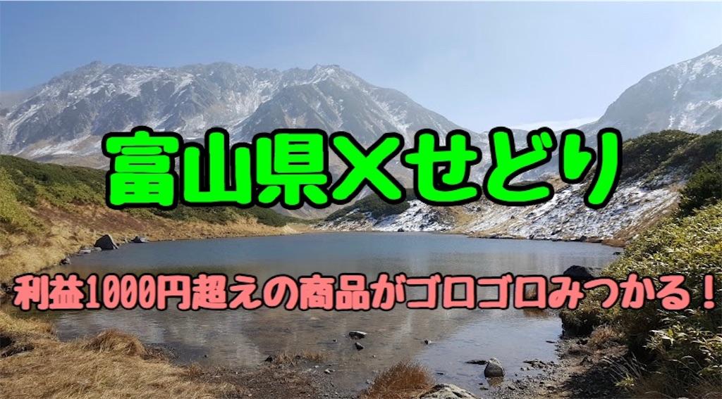 f:id:yuu304810:20200221130216j:image