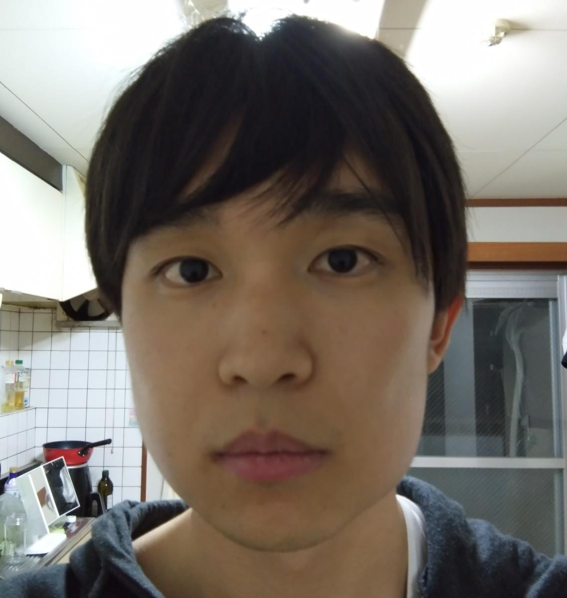 f:id:yuuf:20201105170659j:plain