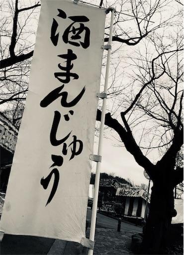 f:id:yuugataJoxaren:20190217215943j:image