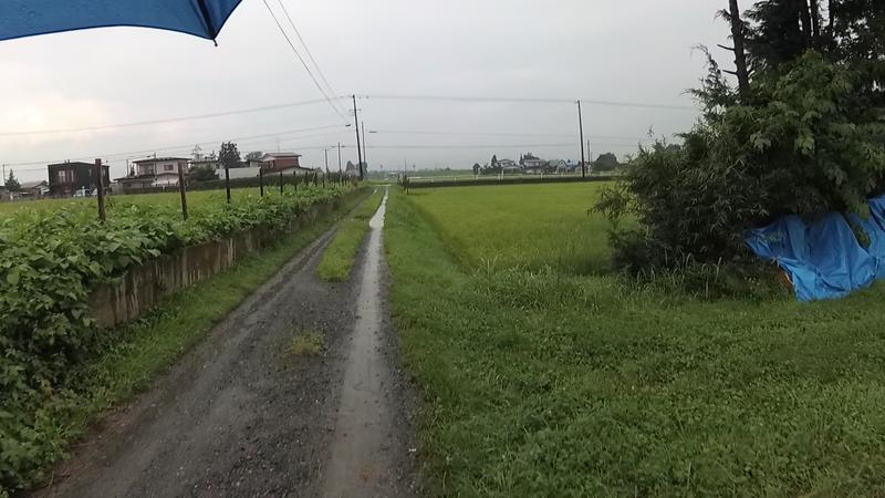 f:id:yuuhiti:20171110004720p:plain