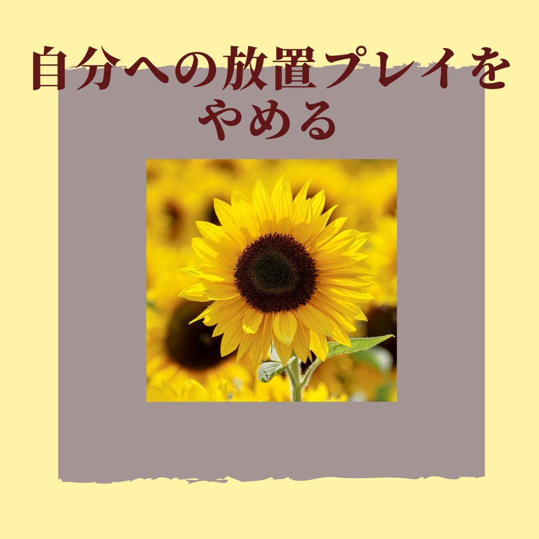 f:id:yuuhotoissho:20210917195609p:plain