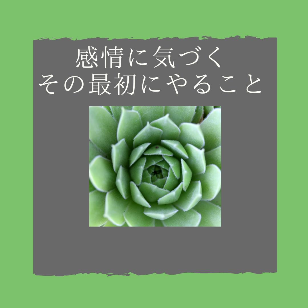 f:id:yuuhotoissho:20210928172005p:plain