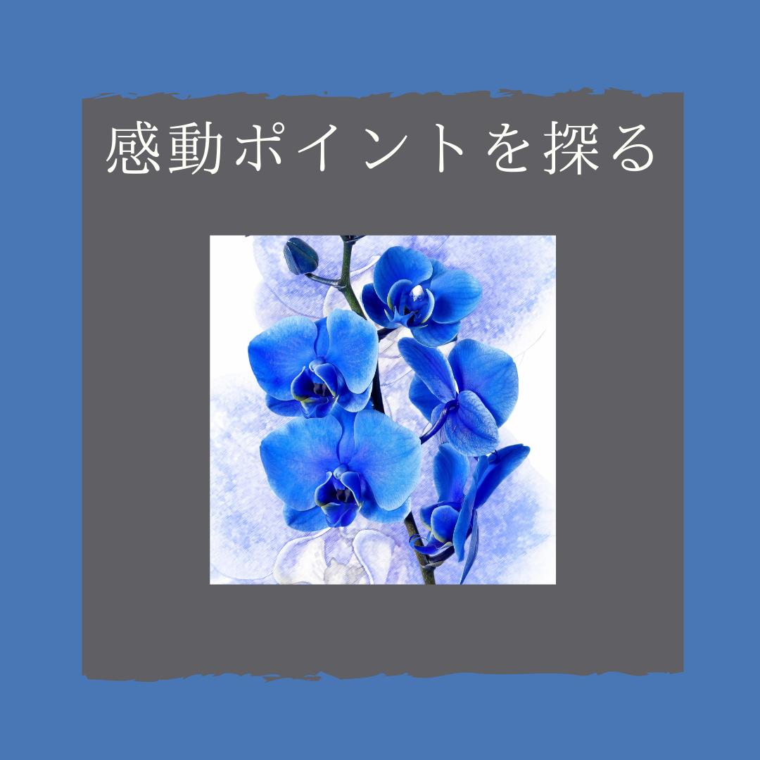 f:id:yuuhotoissho:20211002154504p:plain