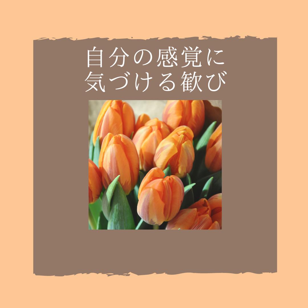 f:id:yuuhotoissho:20211014123131p:plain