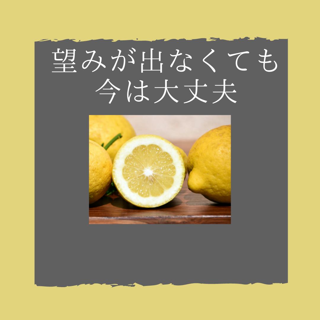 f:id:yuuhotoissho:20211015173350p:plain