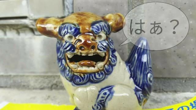 f:id:yuuji464:20191108203145j:image