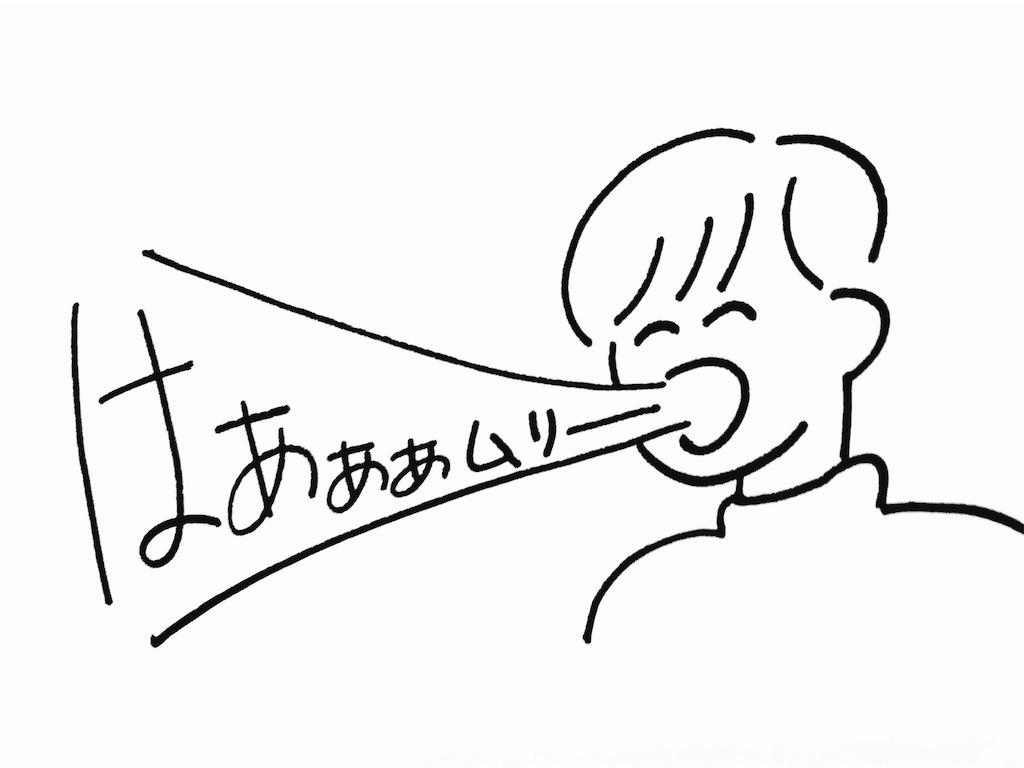 f:id:yuuk08:20170207230950j:image