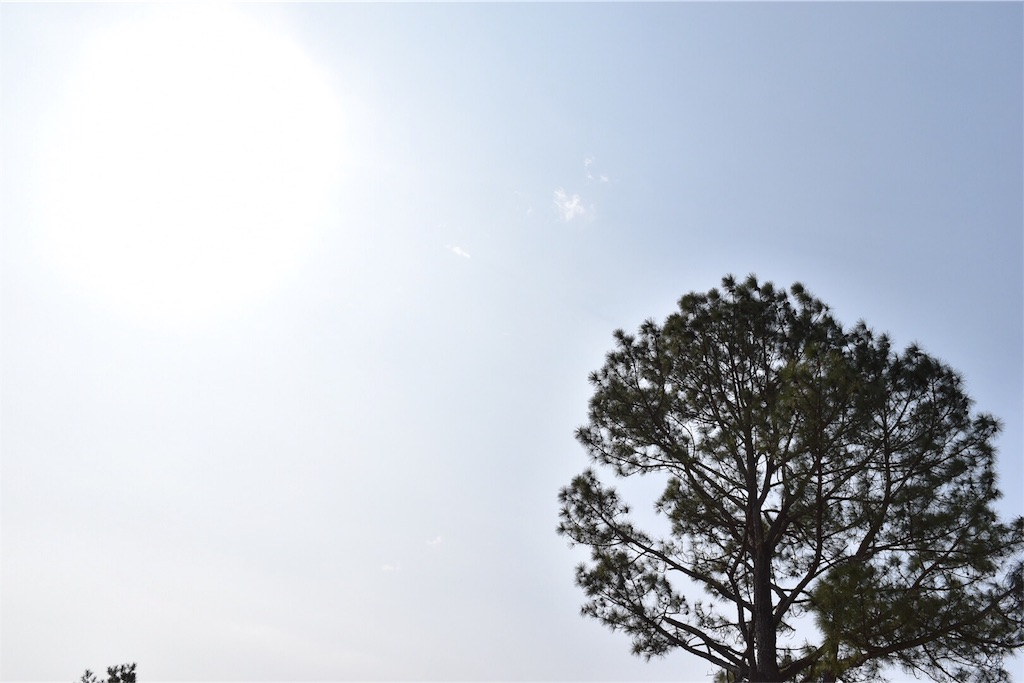 f:id:yuuka95:20170303010105j:image