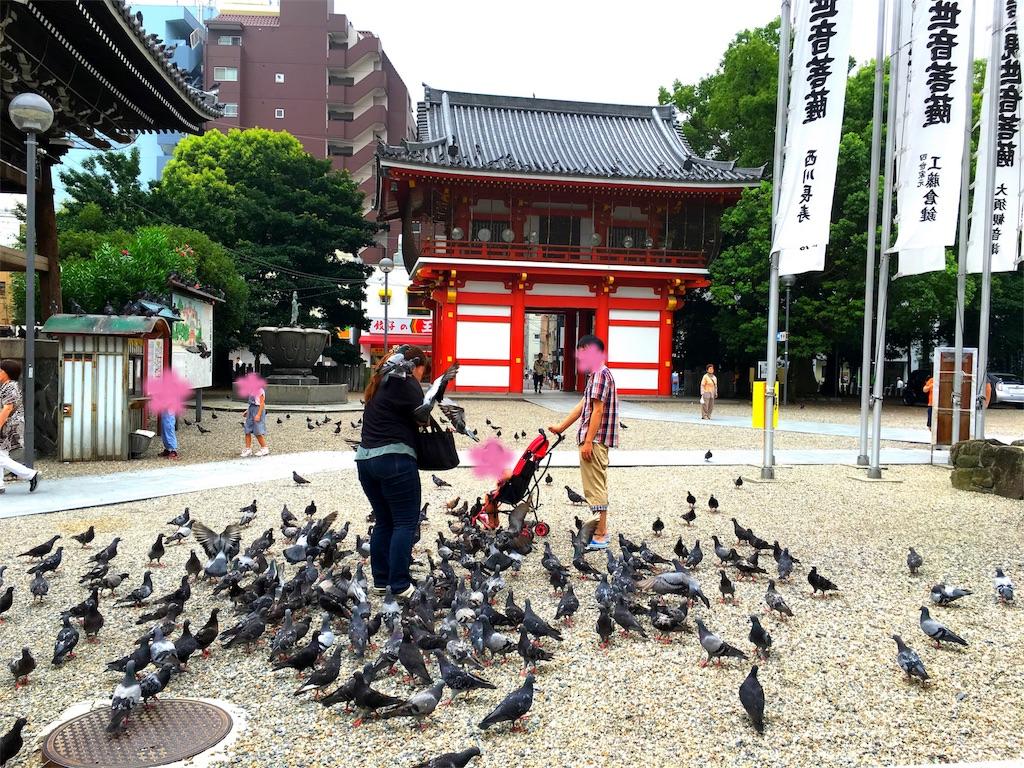 f:id:yuuki-houjyuin:20160728190234j:image