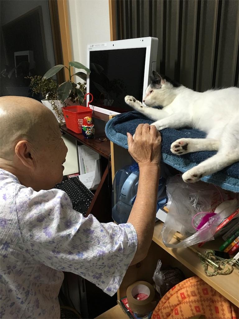 f:id:yuuki-houjyuin:20160915174837j:image