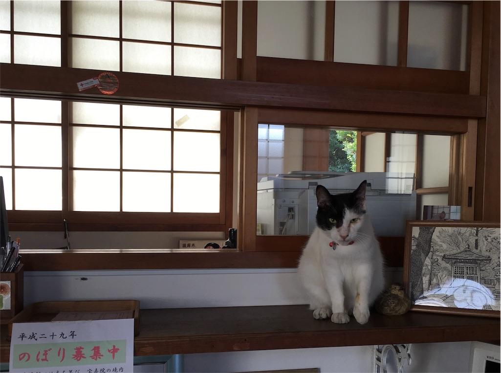 f:id:yuuki-houjyuin:20161019182019j:image