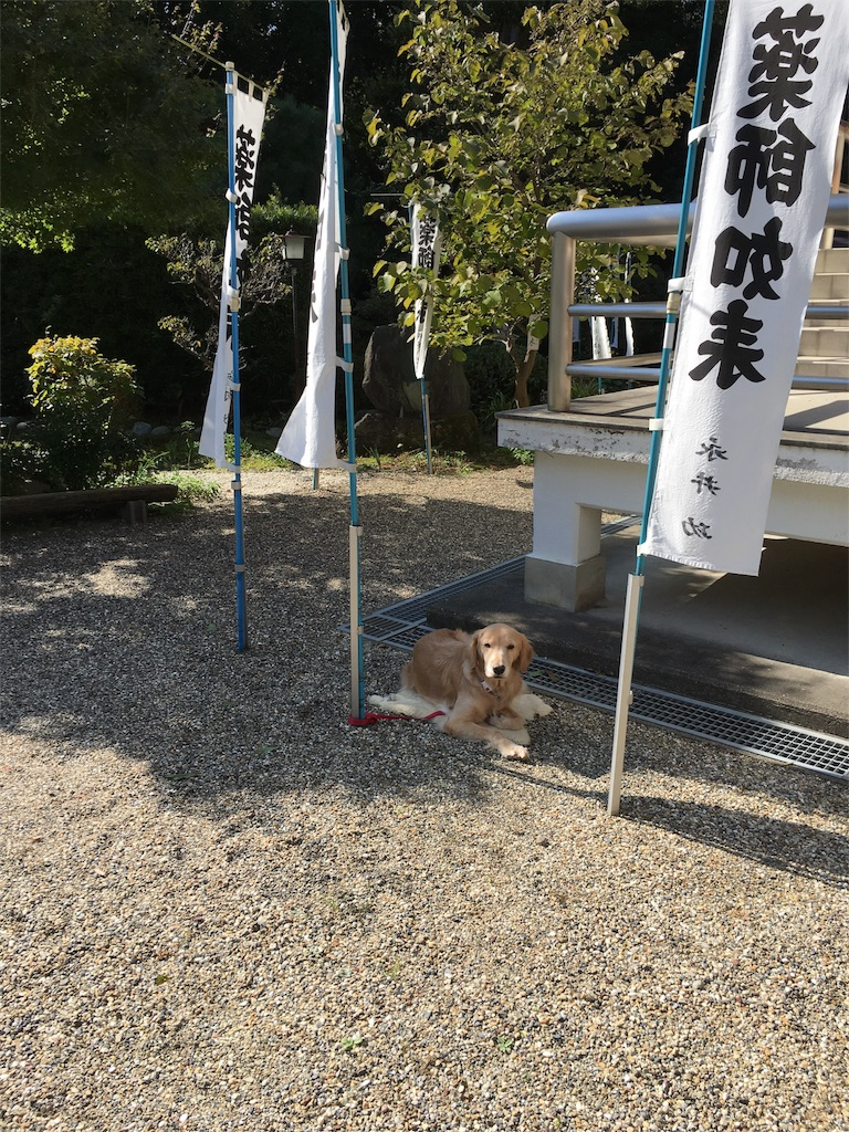 f:id:yuuki-houjyuin:20161106143522j:image