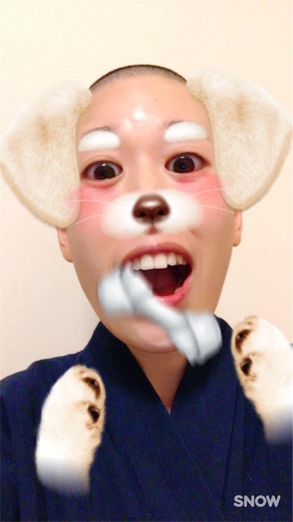 f:id:yuuki-houjyuin:20161110183850j:image