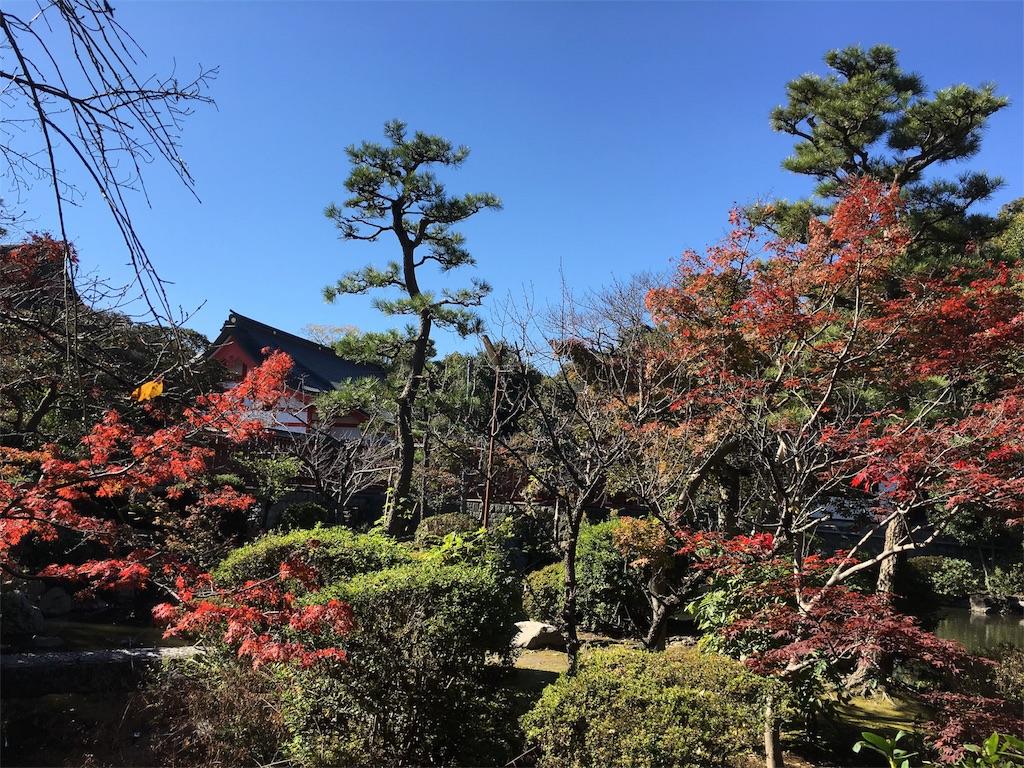 f:id:yuuki-houjyuin:20161116204133j:image