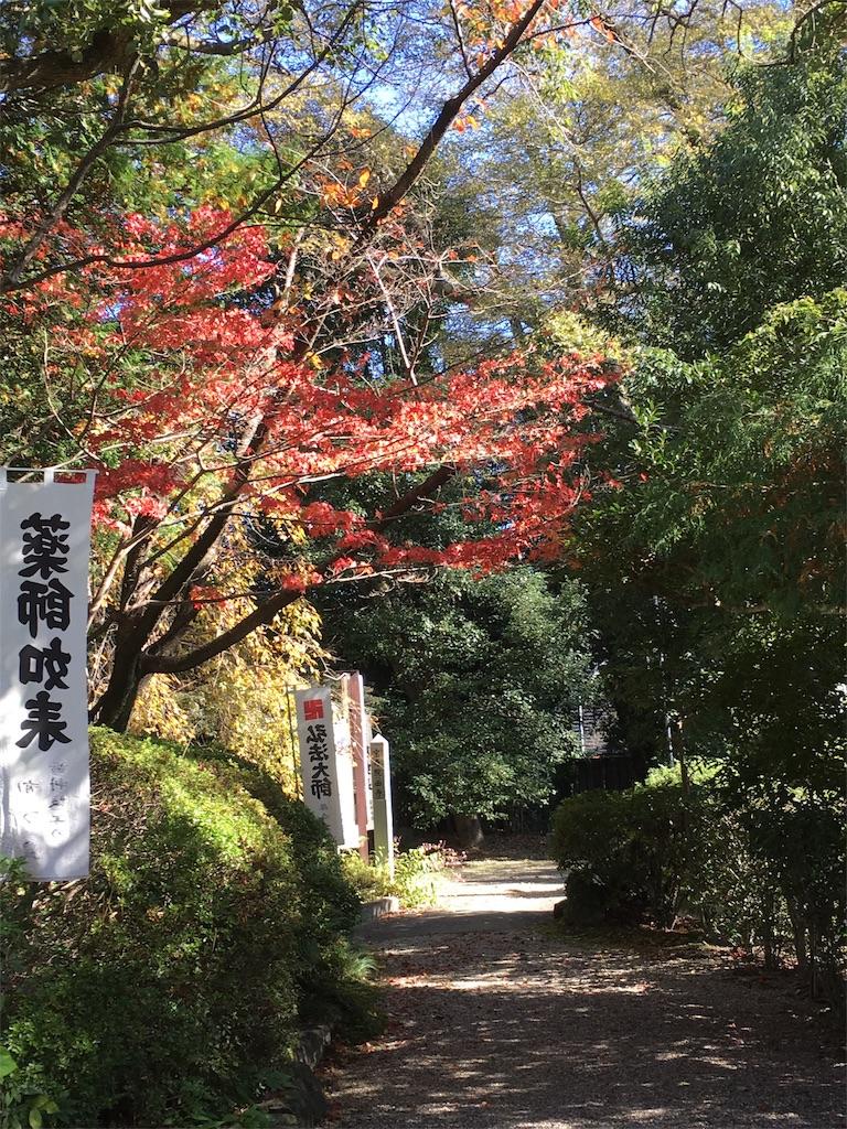 f:id:yuuki-houjyuin:20161116213404j:image